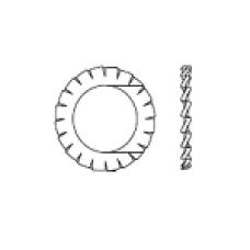 DIN 6798 A Шайба 19 стопорная, с внешними зубцами, сталь, цинк