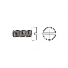 8G201 Винт М6* 10 цилиндр, прямой шлиц, нейлон